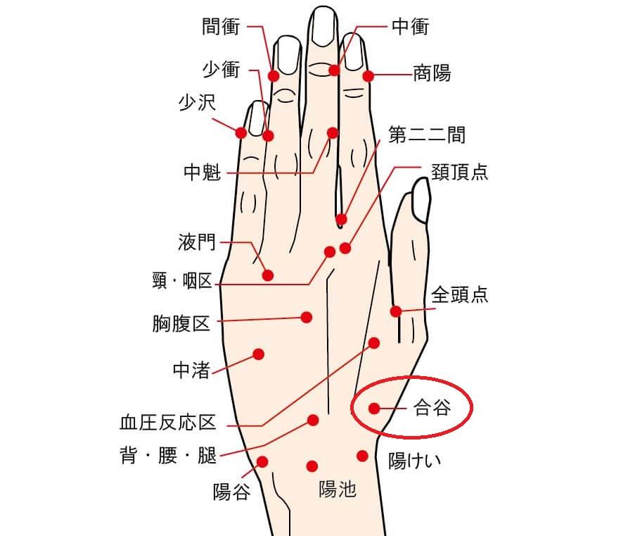 ツボ04(合谷)