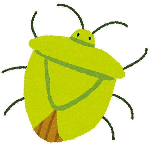 蚊取り線香 カメムシ