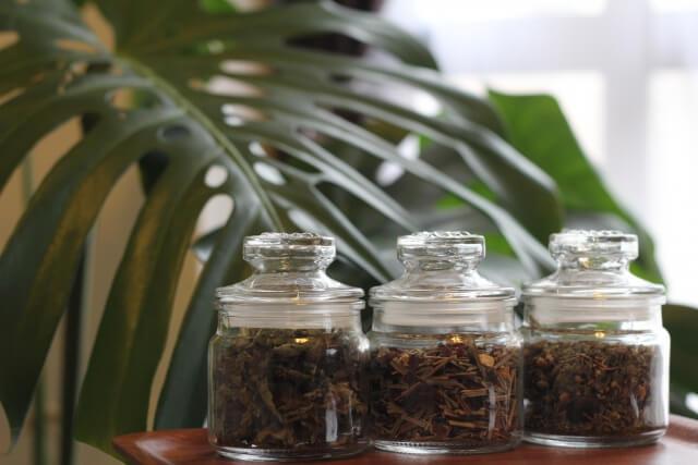 蚊 対策 植物