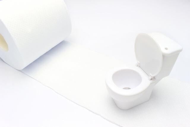 トイレ 黒ずみ 原因